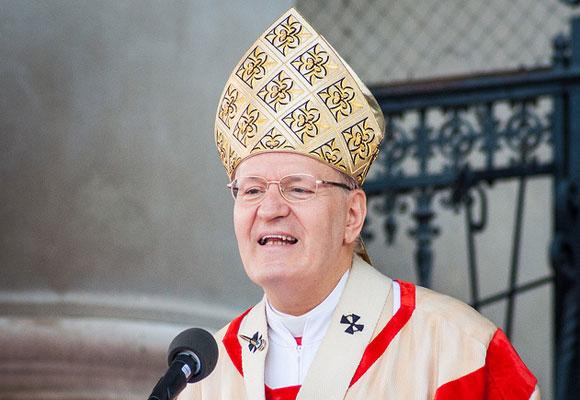 Cardinal Erdo -