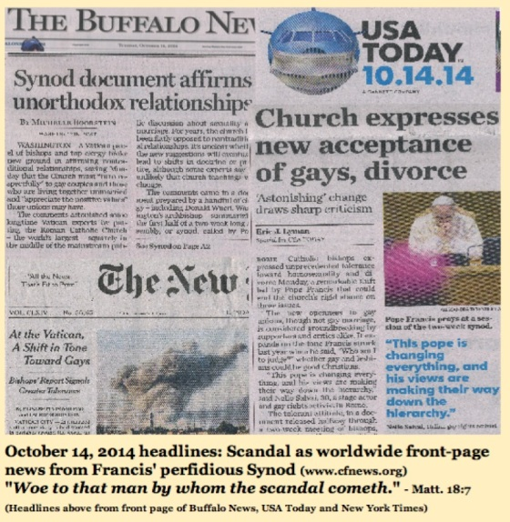 front page_news_synod_pope_francis