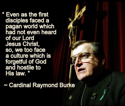 Cardinal Burke quote