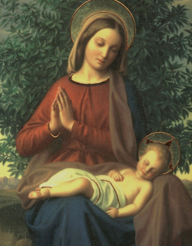 Immaculate Mother ora pro nobis