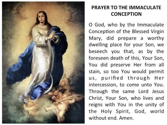 Prayer for the Immaculate Conception Dec 8