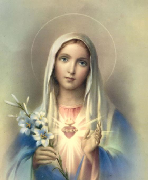 The Very Image of the Immaculate Conception