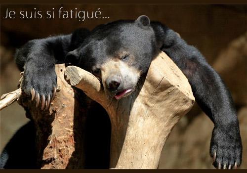 fatigue ...