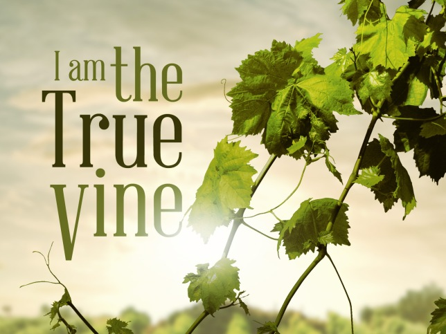 Mass of One Martyr - Gospel - I am The True Vine