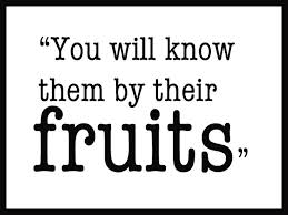 beware of false prophets by their fruits you will know them